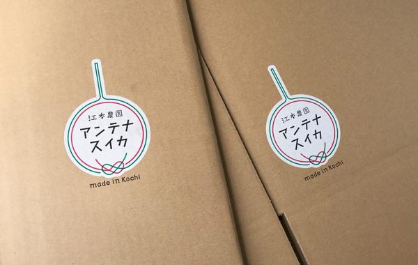 anntenasuika_box