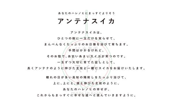 concept_anntenasuika